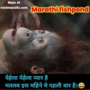 Funny Marathi fishponds